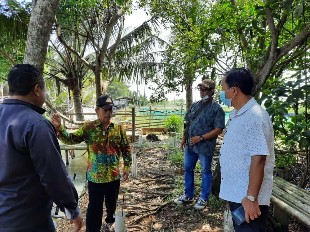 Kunjungan Kepala DLHK DIY Ke Hutan Mangrove Pasir Mendit